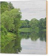 Spring At Kings Pond Wood Print