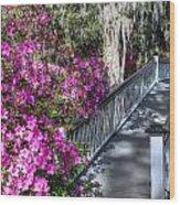 Spring At Magnolia Plantation 4 Wood Print