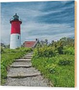 Spring At Nauset Light Wood Print
