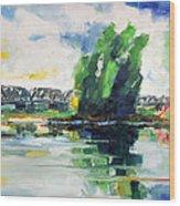 Spring At River Elbe Near Doemitz Germany Wood Print