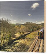 Spring At Seaton Junction  Wood Print