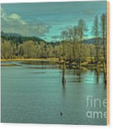 Spring At The Nicomen Slough Wood Print