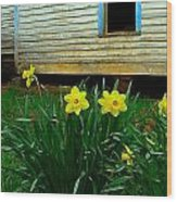 Spring At The Old Home Place Wood Print by Julie Dant