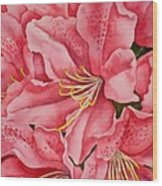 Spring Azalea Wood Print