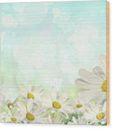 Spring Background With Daisies Wood Print