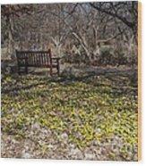 Spring Beal Wood Print