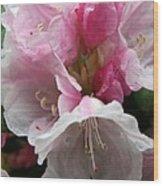 Spring Bells Wood Print