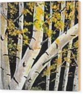 Spring Birch Wood Print