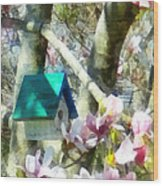 Spring - Birdhouse In Magnolia Wood Print