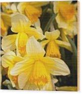 Spring Blooms 6739 Wood Print