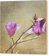 Spring Blossoms - Digital Sketch Wood Print