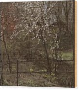 Spring Blossoms Wood Print by Henry Muhrmann