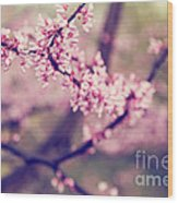 Spring Blossoms II Wood Print