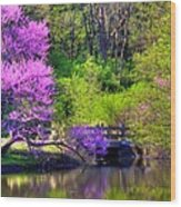 Spring Blossoms On Lake Marmo Wood Print
