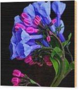 Spring Bluebells Wood Print