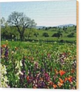 Spring Bouquet At Rusack Vineyards Wood Print