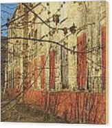 Spring Buds And Urban Decay 3 Wood Print