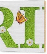 Spring Butterflies Wood Print