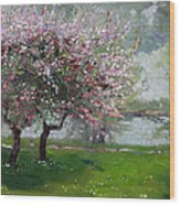 Spring By The River Wood Print