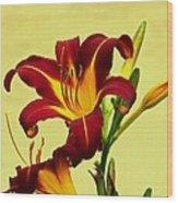 Spring Candor Wood Print
