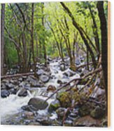 Spring Cascade Of Water From Bridal Veil Falls In Yosemite Np-2013 Wood Print