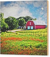 Spring Charm In The Hill Country Wood Print