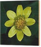 Spring Cheer Wood Print