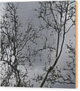 Spring Clouds Wood Print