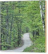 Spring Country Road Wood Print