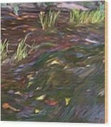 Spring Creek In Oak Canyon Park Wood Print