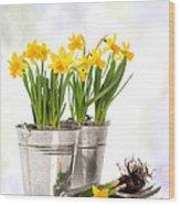 Spring Daffodils Wood Print by Amanda Elwell