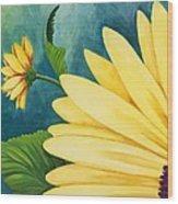 Spring Daisy Wood Print
