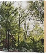 Spring Day In The Park Wood Print