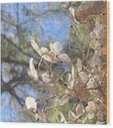 Spring Fancies 4 Wood Print