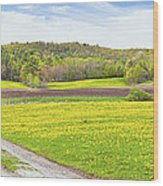 Spring Farm Landscape With Dirt Road And Dandelions Maine Wood Print