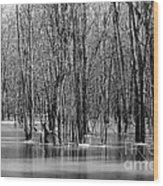 Spring Flooding Wood Print