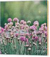 Spring Floral Background Wood Print