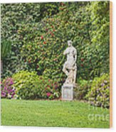Spring Flower Blooms At The North Vista Lawn Of The Huntington Library. Wood Print