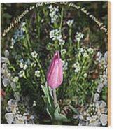 Spring Flower Pano Wood Print