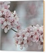 Spring Flowering Tree In Spring Wood Print