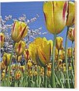 Spring Flowers 12 Wood Print