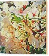 Spring Flowers 27 Wood Print