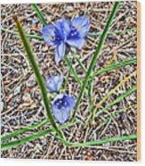 Spring Flowers 3 Wood Print