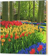 Spring Flowers In A Park Wood Print