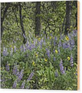 Spring Flowers In The Columbia Gorge Wood Print