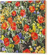 Spring Flowers No. 2 Wood Print