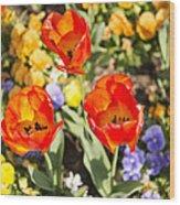 Spring Flowers No. 3 Wood Print