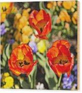 Spring Flowers No. 4 Wood Print