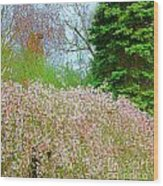 Spring Foliage Wood Print