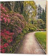 Spring Footpath Wood Print